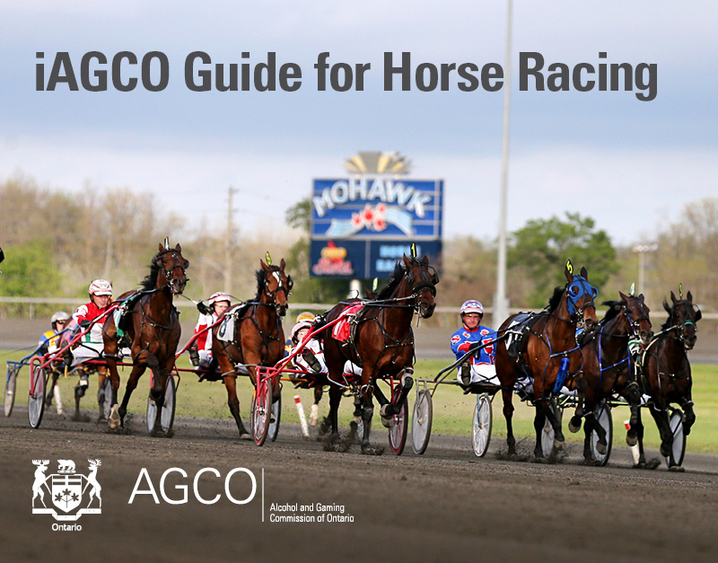horse_racing_whats_changing_guide_web_book_banner_feb_2020.jpg