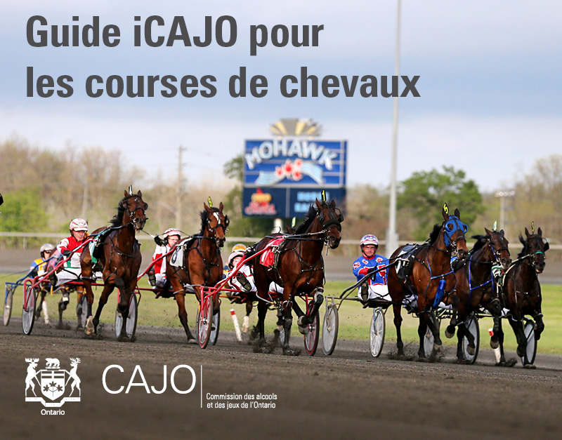 horse_racing_whats_changing_guide_web_book_banner_feb_20202.jpg